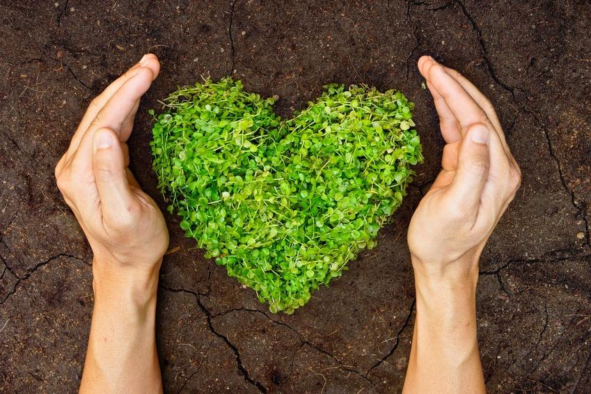 Empresa reciclado de Resid. Orgánicos